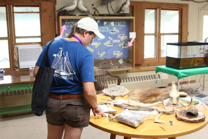 Student observing specimens displayed on a table.