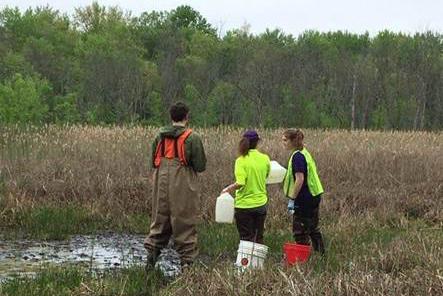 Albion College students investigate freshwater habitats in Michigan.